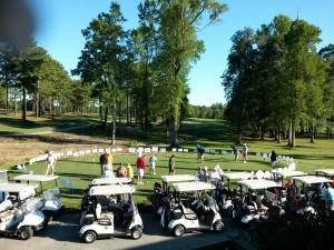 golf 2015b